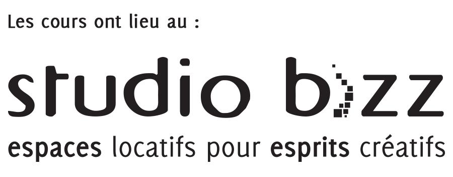 bizz_logo_noir_sa